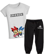 Disney Friends Set