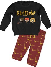 House Gryffindor Set