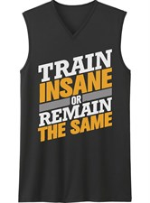 TRAIN INSANE OR REMAIN SAME
